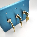 3 Gang Face Plate Cover for Standard Gang Box with Double Momentary Reset On-Off-On Toggle Key Switches